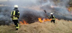 в Украине за сутки произошло 195 пожаров на открытых территориях, больше всего - в Донецкой области