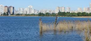 У столиці знищують екосистему озера Вирлиця