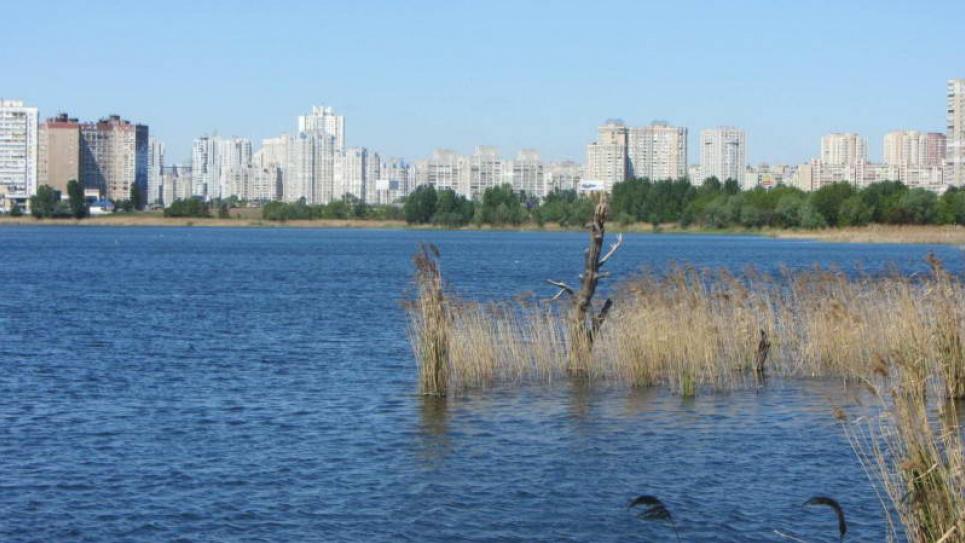 В столице уничтожают экосистему озера Вырлица