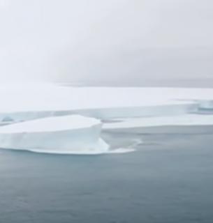Крупнейший в мире айсберг раскололся на части