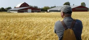 Аграріям затвердили компенсацію від держави