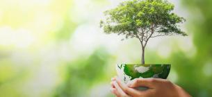 Світ відзначає 51-й День Землі