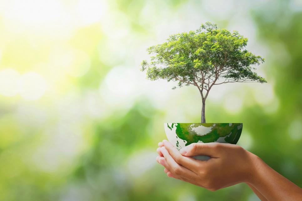 Мир отмечает 51-й День Земли