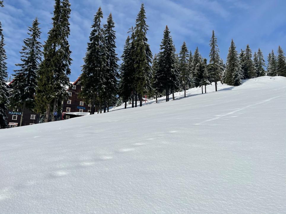 Популярний український курорт потопає у снігу (ФОТО)