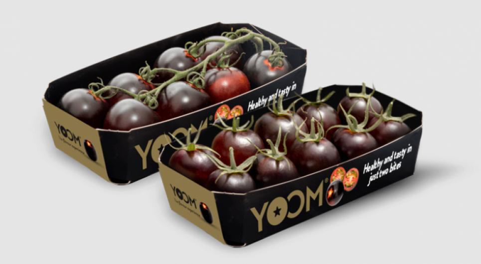 Українці зможуть купувати чорні помідори, насичені антиоксидантами