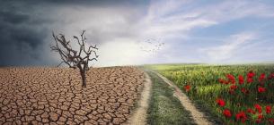 Результати кліматичного саміту: США скоротять викиди, ЄС - стане вуглецево-нейтральним