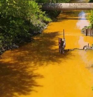 У КМДА пообіцяли одразу розповісти, чому вода в річці Либідь стала жовтою