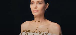 National Geographic зняв приголомшливий фотопроект на захист бджіл: красуня Джолі та комахи