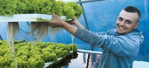 На Тернопільщині подружжя вирощує зелень не з грядки, а з… води