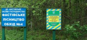 На Київщині розграбували лісгосп: з «Урочища Унава» вивели майже 1 тис га