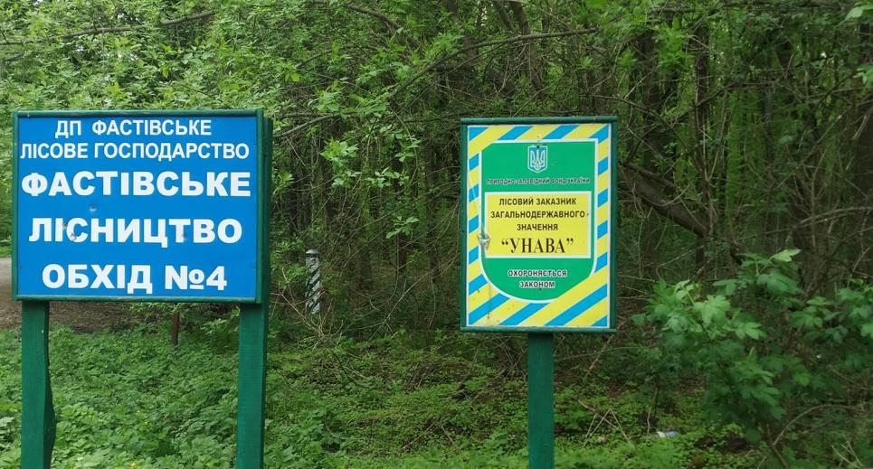 На Киевщине разграбили лесхоз: с «Урочища Унава» вывели около 1 тыс га