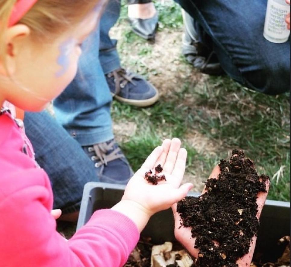 День компоста: полезное удобрение и бизнес на отходах