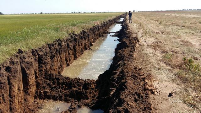 У Тузлівських лиманах незаконно вирили канаву яка загрожує тваринам, землю крадуть