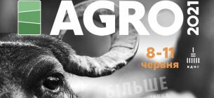 В Киеве продолжается «АГРО-2021» 12 спецвиставок, автофестиваль с тест-драйвами и кулинарный фестиваль
