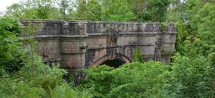 В Шотландии есть мост собак-самоубийц: странному явлению уже более 70 лет