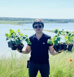 В Одесской области акция «озеленения» убивает краснокнижные растения