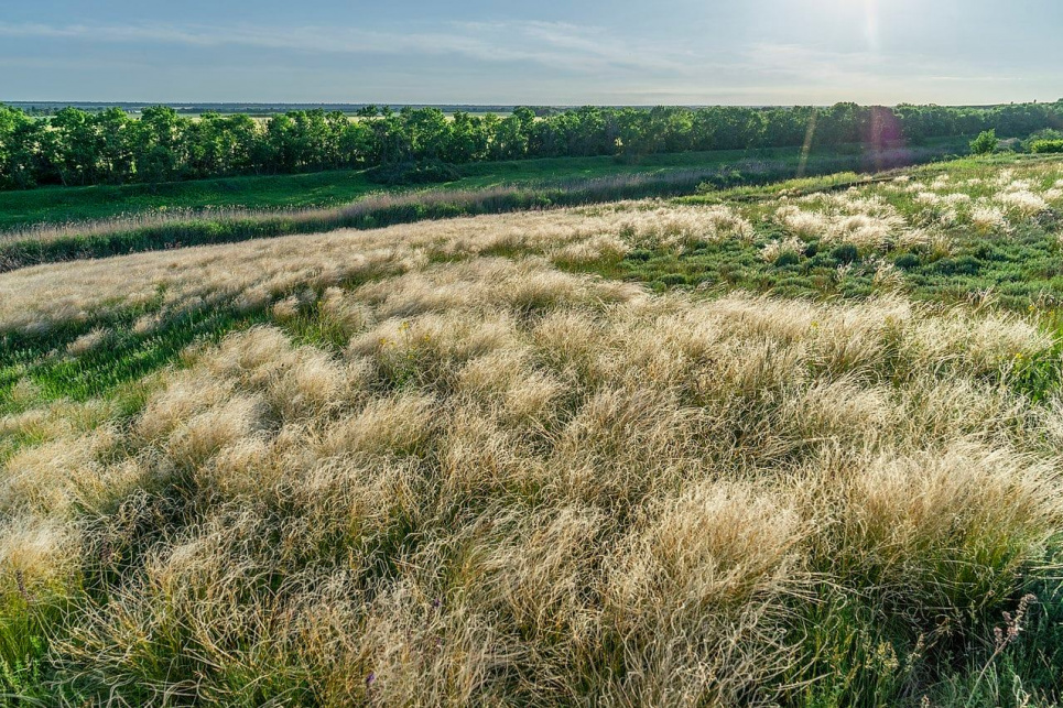 У Дніпропетровській області на земельні торги виставлені землі 20 заказників