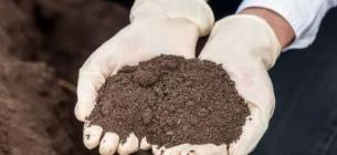 Цукрорафінадний завод на Черкащині отруїв землю токсичними речовинами