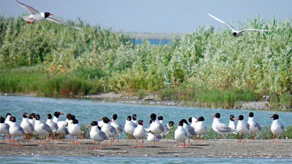 В Херсонской области открывают пять новых туристических маршрутов