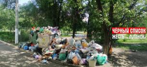 Луганськ тоне в смітті: центр міста завалений смердючими купами відходів