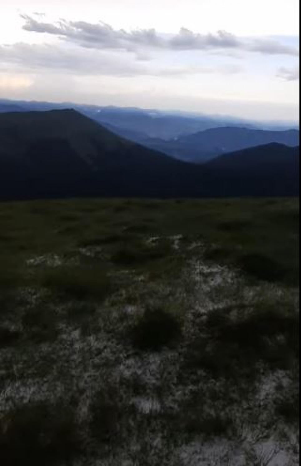 Фото: скрін із відео
