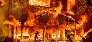 Випалена земля: лісові пожежі спустошують захід США