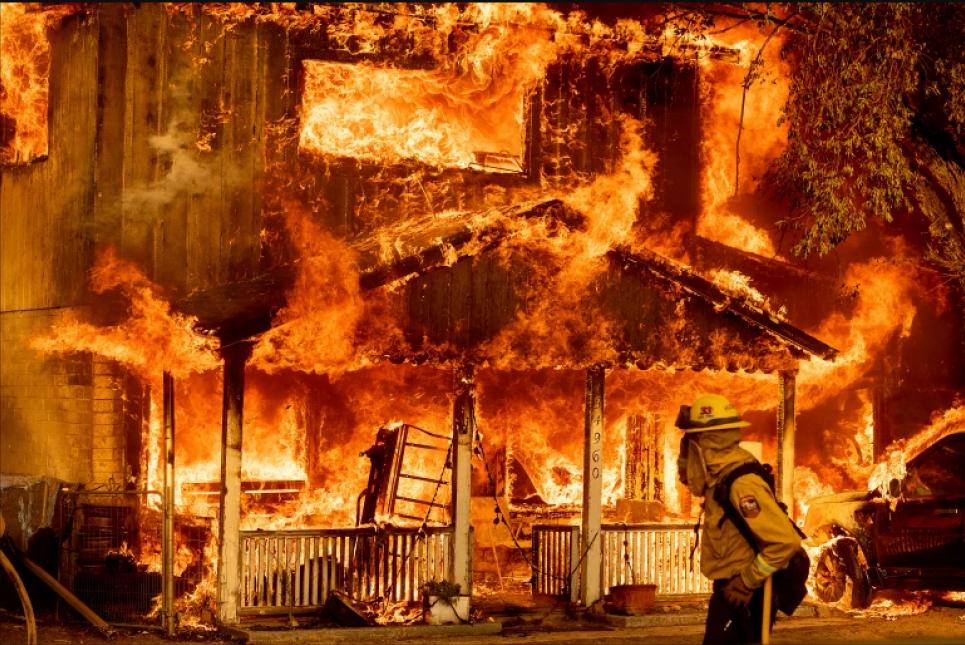 Выжженная земля: лесные пожары опустошают запад США