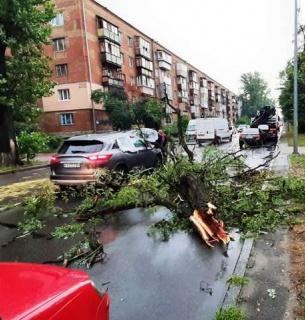 В Украине обесточены 75 населенных пунктов, в столице прошел бурелом