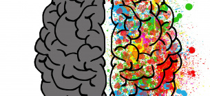 Всемирный день мозга: за что борются два полушария