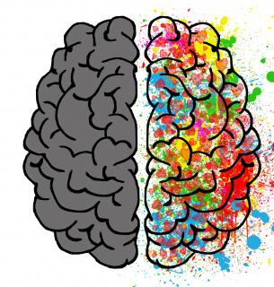 Всесвітній день мозку: за що борються дві півкулі