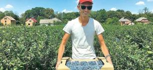 На Львівщині троє братів створили господарство і вирощують лохину