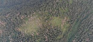 Загальний вигляд розладів деревостанів в ур. Чорний Грунь 27.07.2021 р.