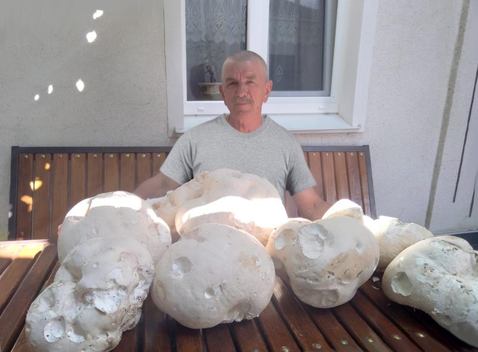 На Подолье мужчина «поохотился» за грибами: размер каждого больше, чем человеческая голова