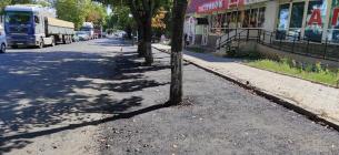 У Миколаєві на вулиці дерева закатали в асфальт