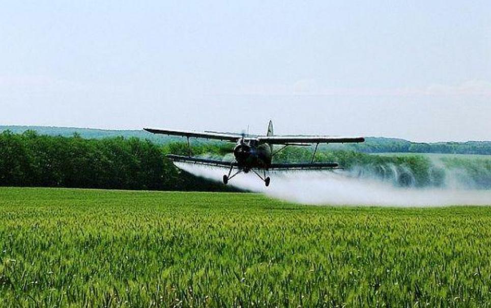 Фото: AgroPolit.com