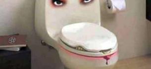 «Живий» туалет. Фото з відкритих джерел
