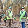 Фото: Житомирське обласне управління лісового та мисливського господарства